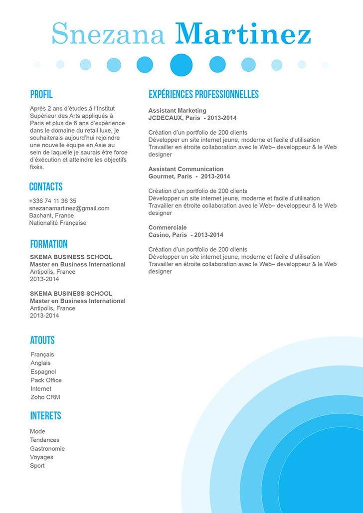 Exemple de CV fluide et agréable à l'œil car savamment mis en page.