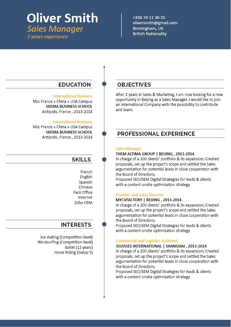 Professional CV template to help you get that dream job