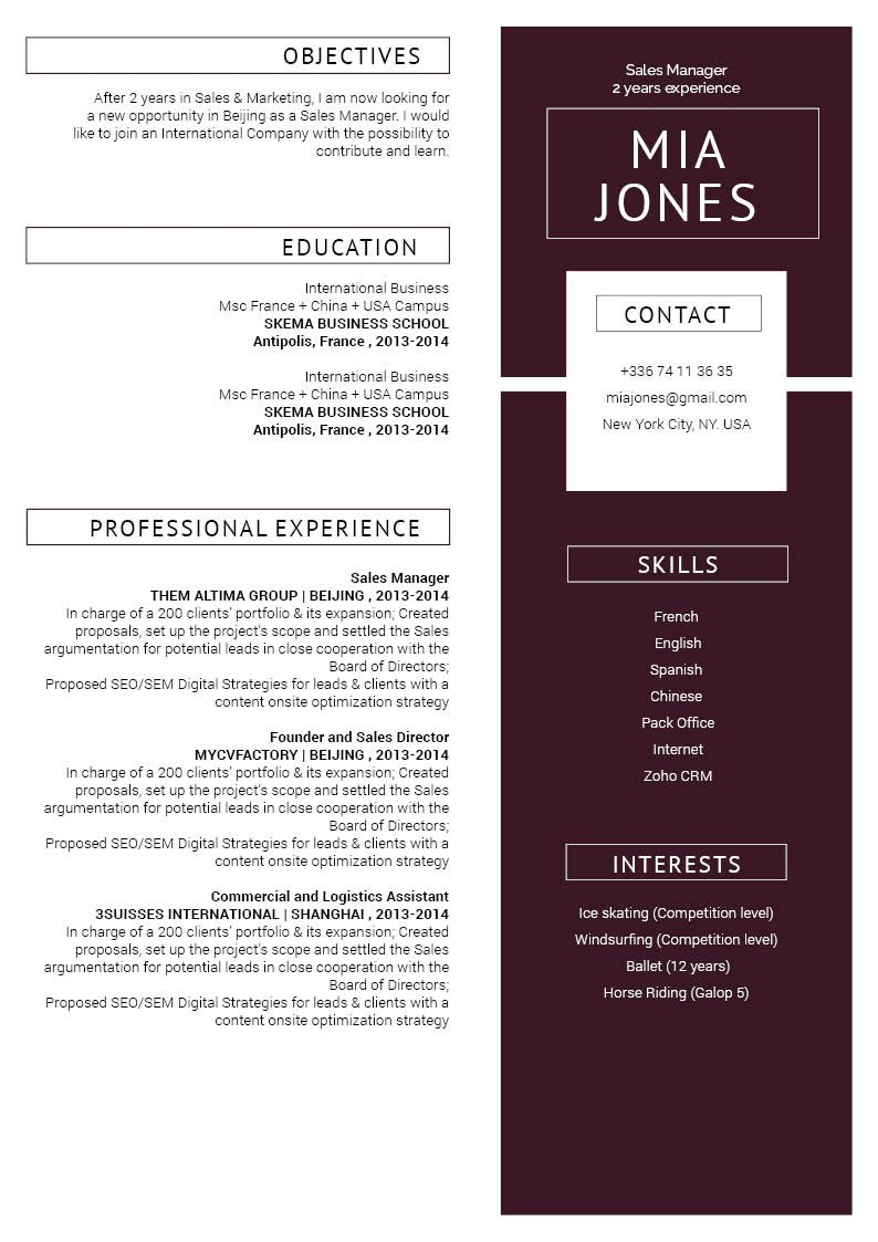 Well-crafter format makes this great CV template a solid hit.