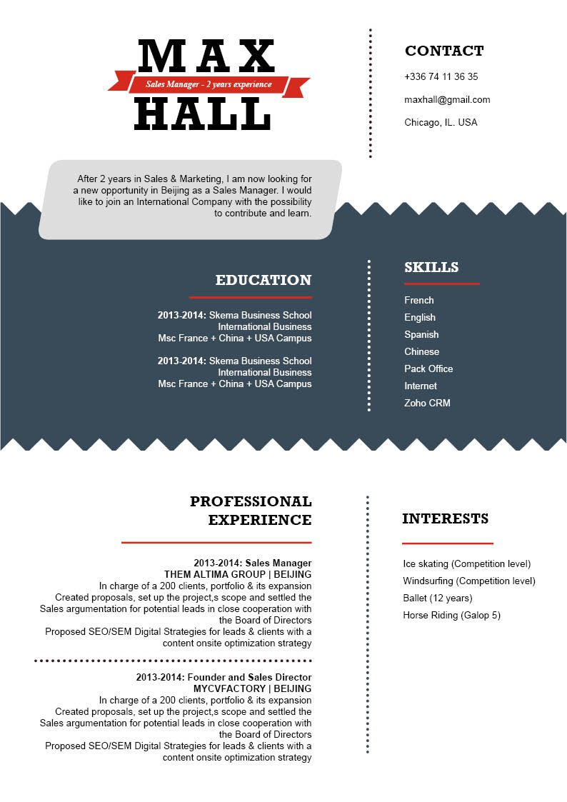 Very well-written standard Professional  CV