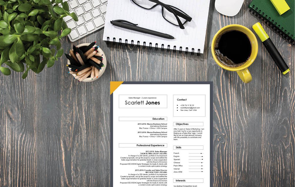 Grab that professional career with this professional resume template