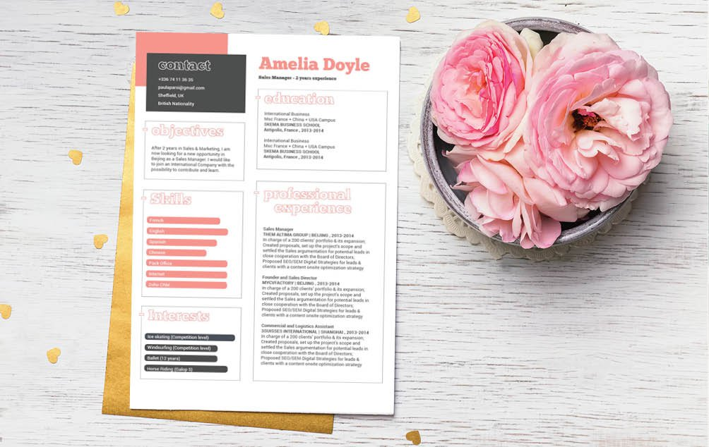 Create the perfect professional resume with this modern cv format!