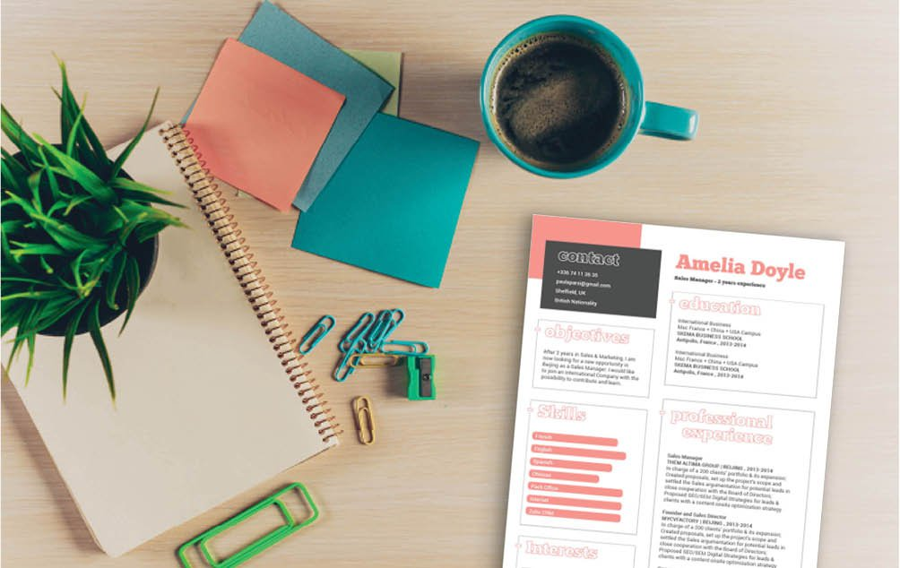 One of the best modern cv format online -- clear and concise with no added fus!