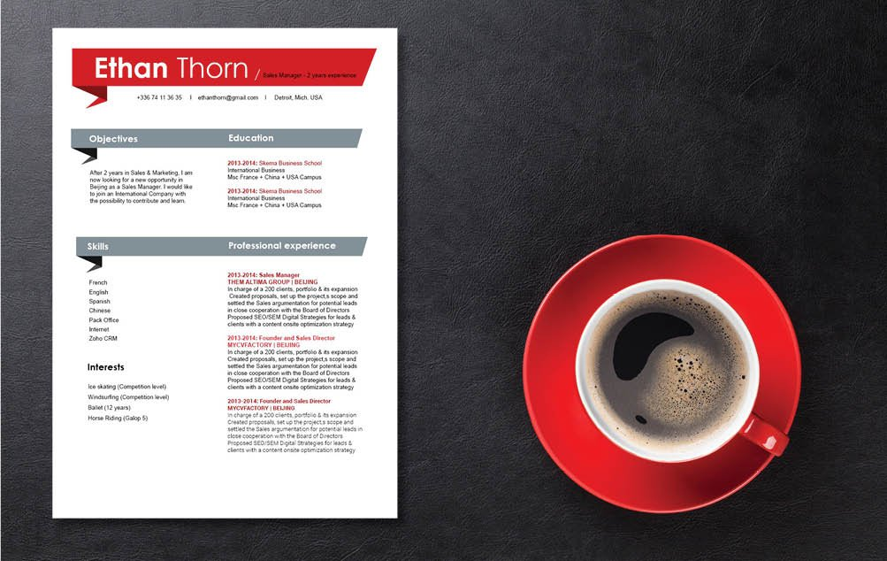 This CV template has what it take to become the best resume for professionals