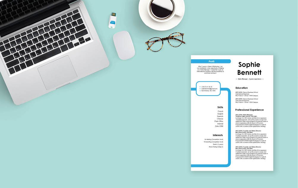 You need a good cv format to create the ideal professional CV -- and we have it here!