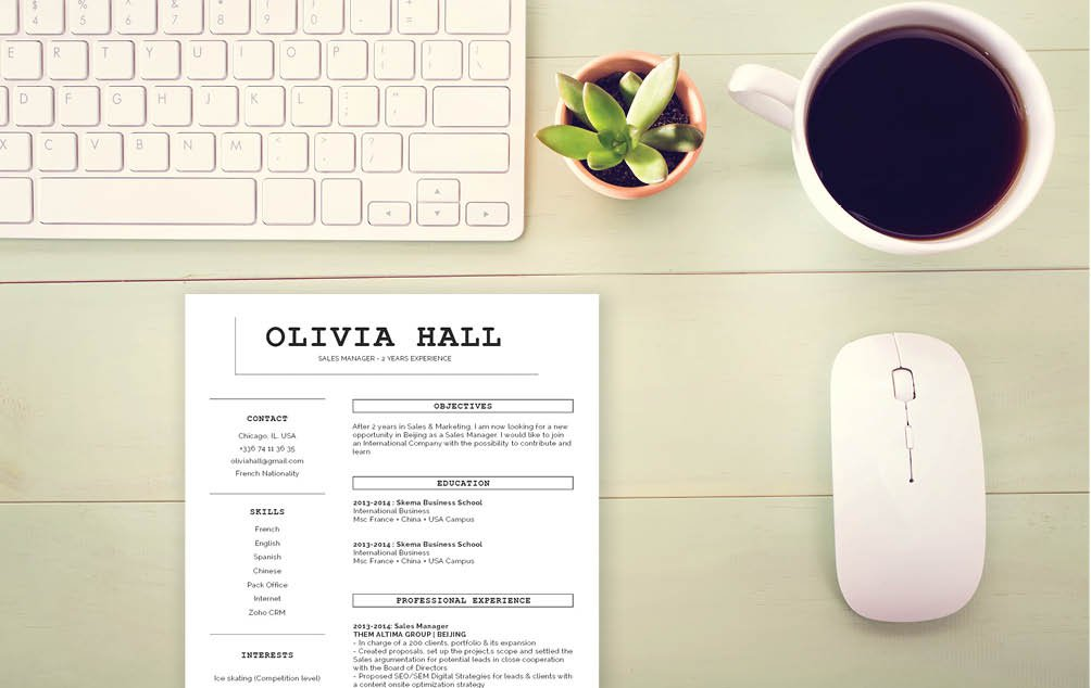 This CV has what it take to become the best functional resume template  for professionals