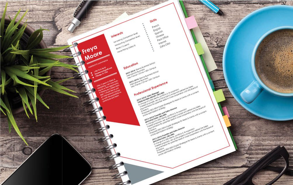 A great mix of cretivity and functionality lends this CV template a near perfect design