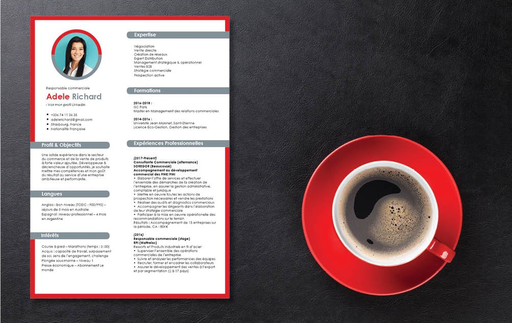 Un modèle de CV qui oscille entre simplicité et austérité, avec des couleurs froides comme le gris.