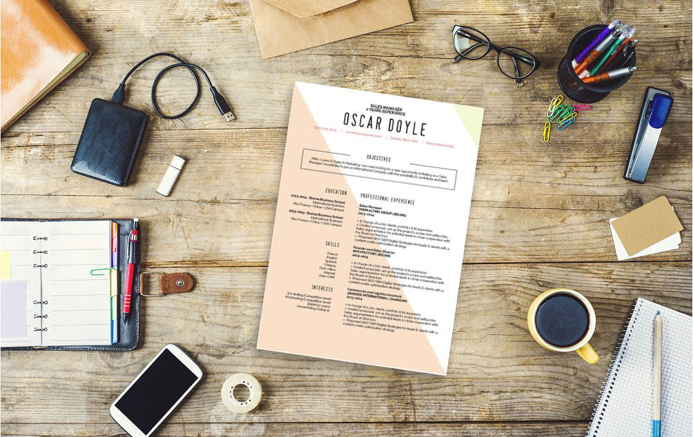 The format used in this professional CV is sure to impress any recruiter -- one of the best resumes online!