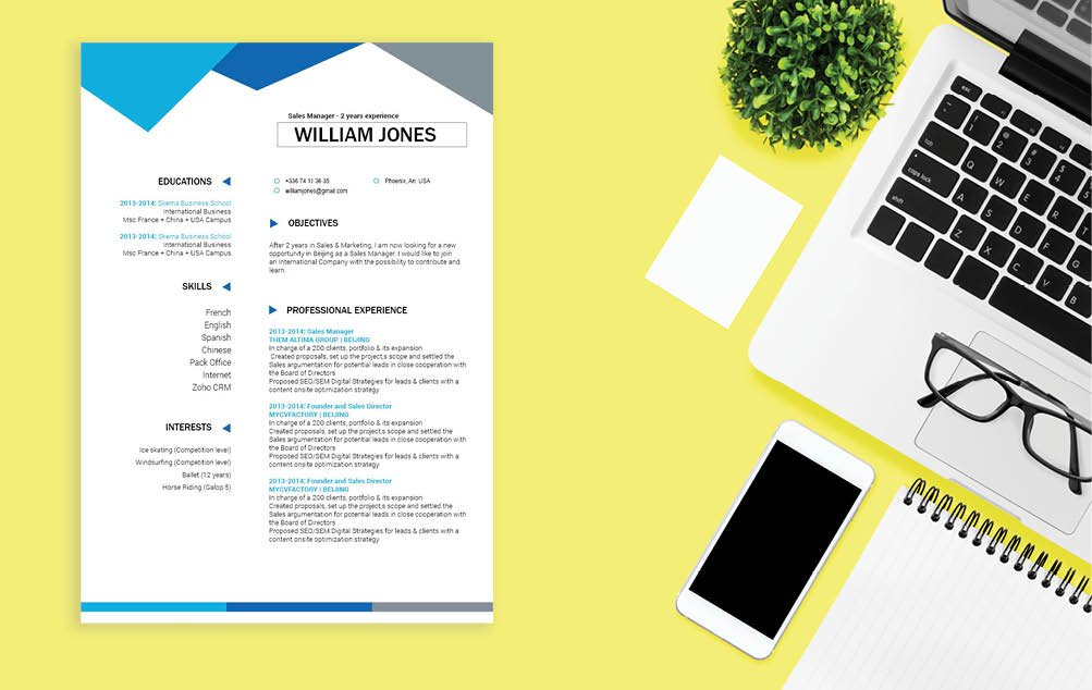 Created perfecty with colors and shapes made to create a professional CV template