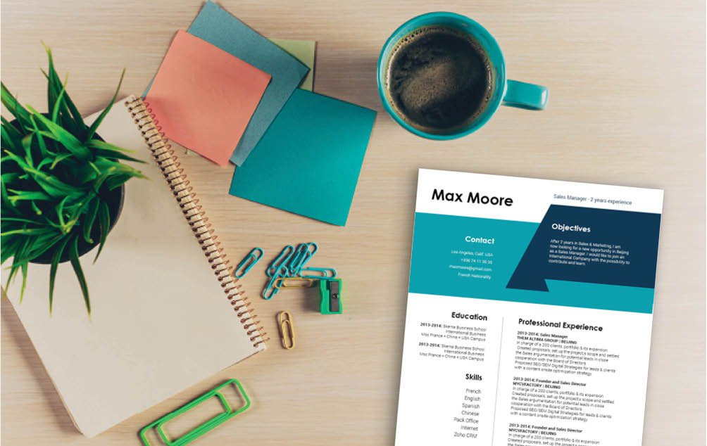 A professional resume template that is sure to make your template a real show-stealer!