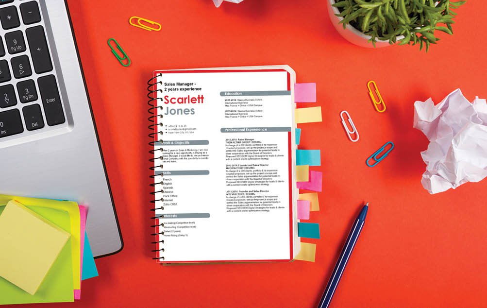 The colors are great building blocks to a cv design