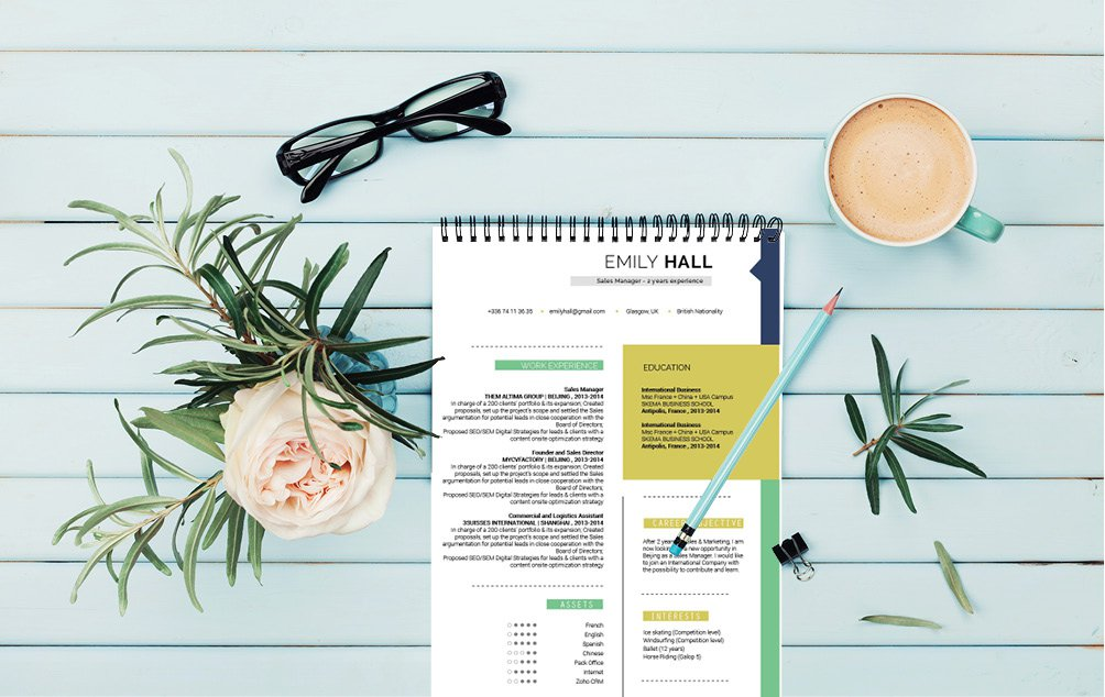 A perfect color scheme for this the perfect modern CV