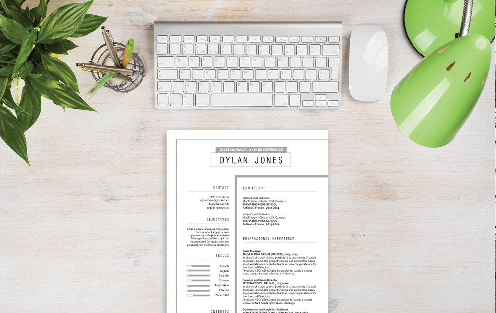 The best Professional CV Template we have that allows any professional to rise up the ranks