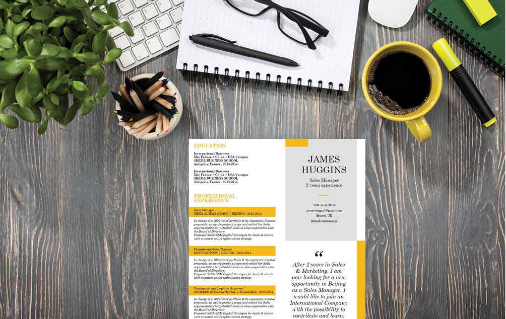 Look for a professional CV? Then this resume template is a sure winner