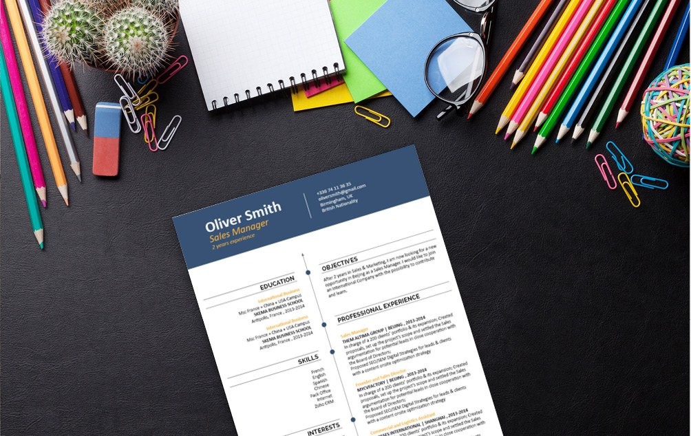 A professional CV template that all job seekers need