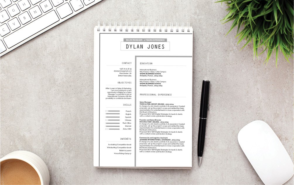 The best Professional CV Template too boost your career!