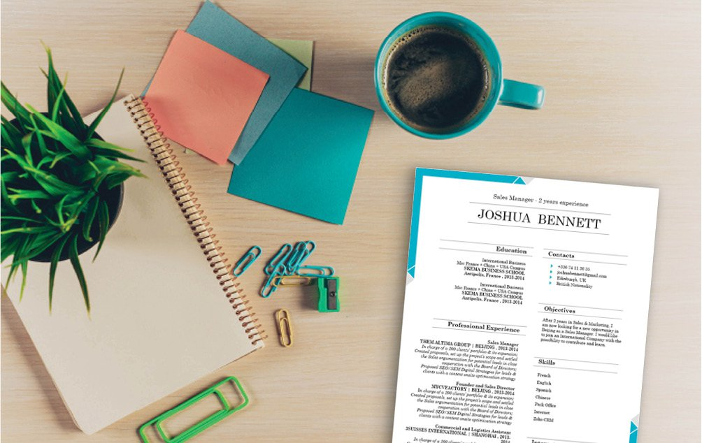 Clear and comprehensive are two words that best describe this professional CV