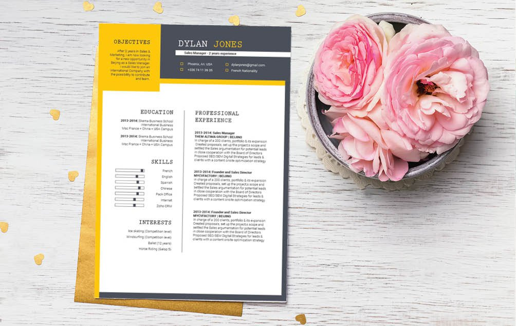 A modern resume template with a clean and functional design is crafted for any sector