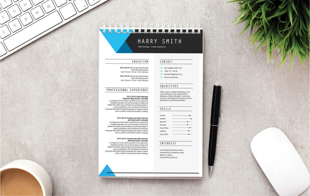 Chronological, Functional, and creative professional resume template