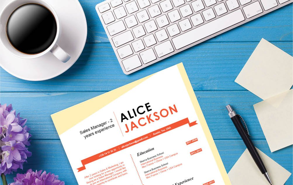 Clear and comprehensive are two words that best describe this Cv template