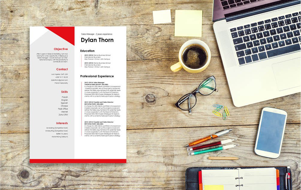 Watch your fly thanks to this great simple resume template