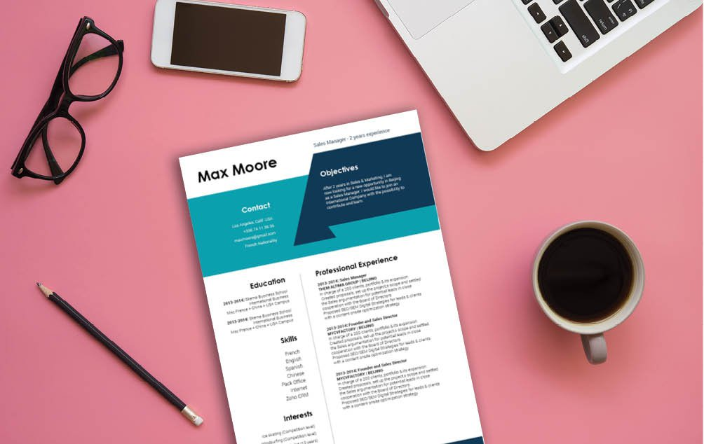 This professional resume template has a professional design perfect for any job type