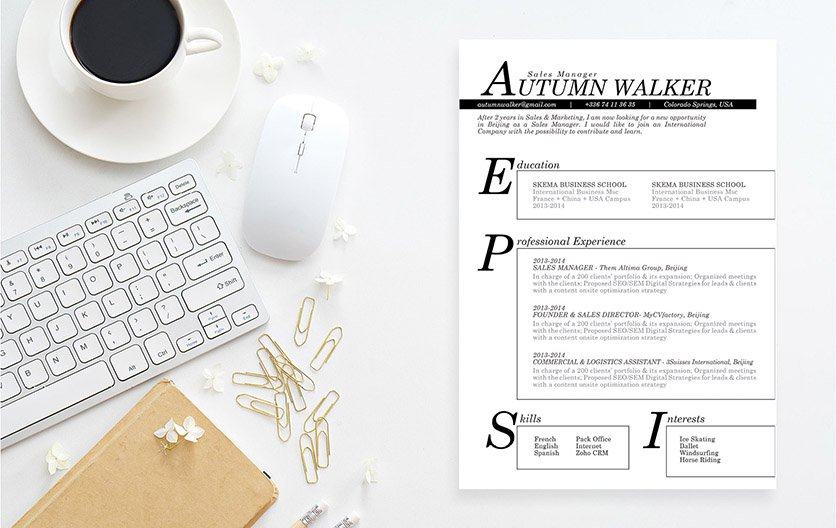 Great balance of designs and formatting  and effective resume template of choice!