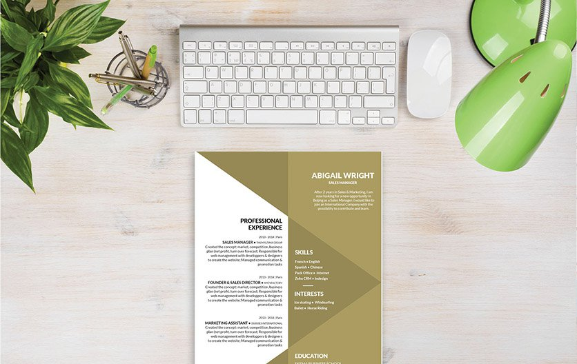 A resume layout with great choice of formatting and design