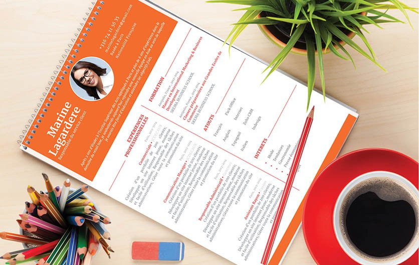 Un modèle de CV parfaitement agencé tant sur le plan esthétique qu'informatif.