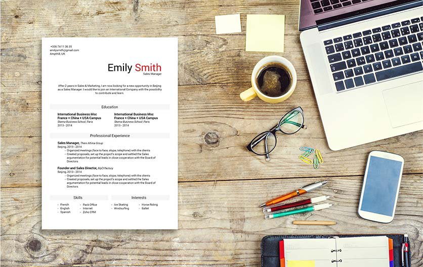 A CV format made to perfection -- there is nothing you need more!