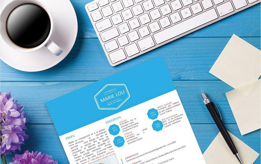 cv design  u2013 cv norv u00e9gien  u00b7 mycvfactory