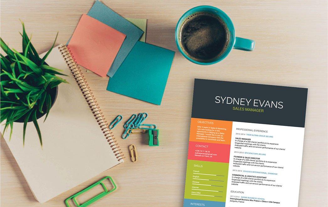 Un CV en ligne ordonné et coloré, attirant dès le premier coup d'œil l'attention du recruteur.