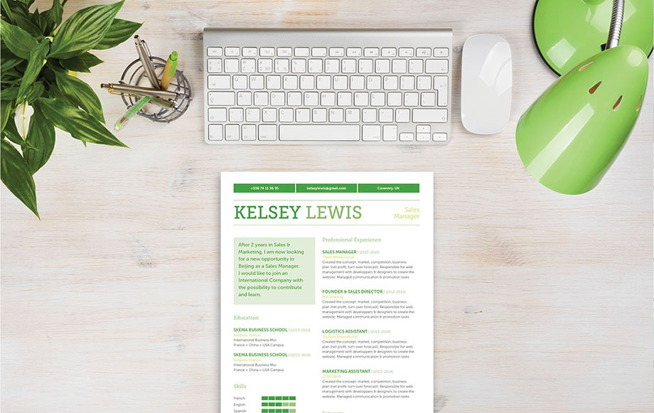 A sales resume template that use all functional parts to help bring out all your qualifcations