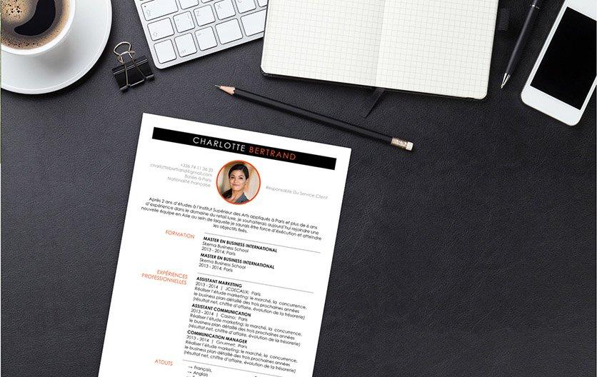 Un exemple de CV répartissant savamment dans des bandes, des encadrés, des cercles et avec des listes à puce ses renseignements.