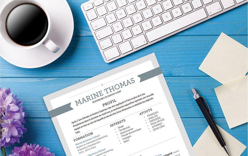 Un modèle de CV authentique et facile à lire car parfaitement mis en page.