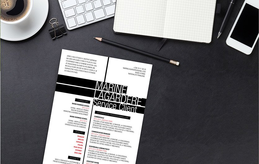 Un exemple de CV percutant et persuasif de par ses couleurs et présentation.