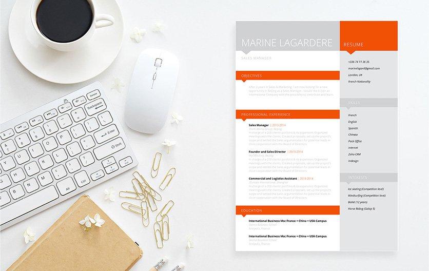 Mycvfactory-resume templates-81-ENG