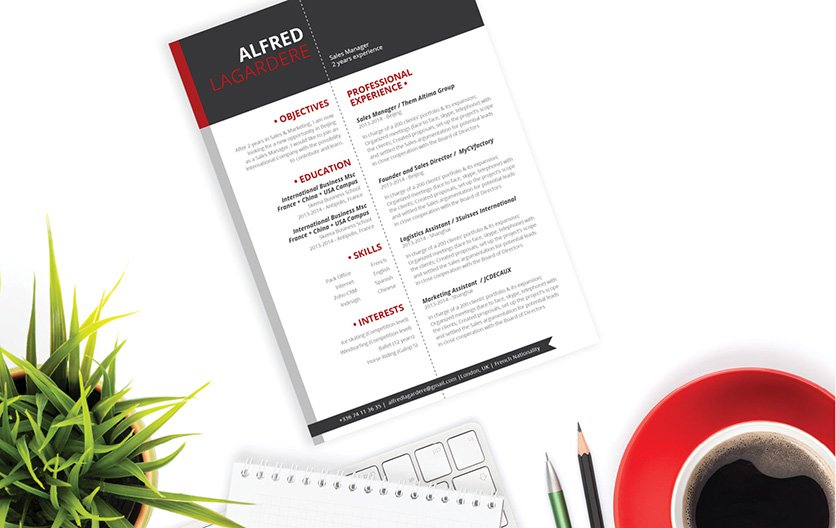A great layout makes this template a great resume for all job types