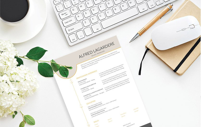 A clean CV format for all job types