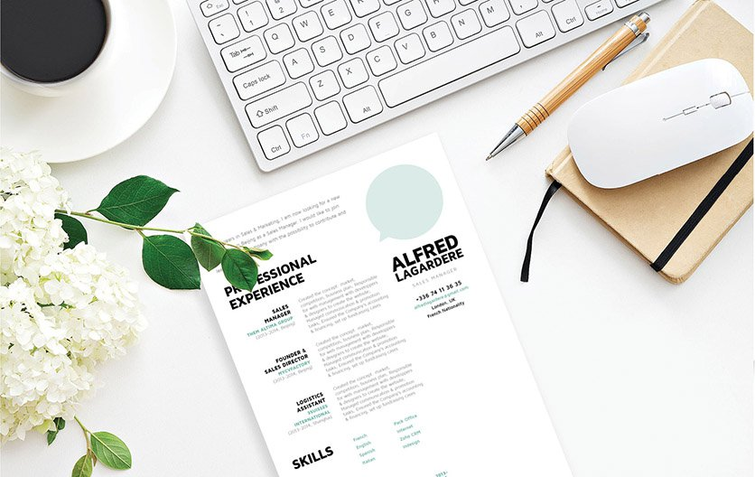 A superb professional resume that deatils all of your skill and expertise excellently