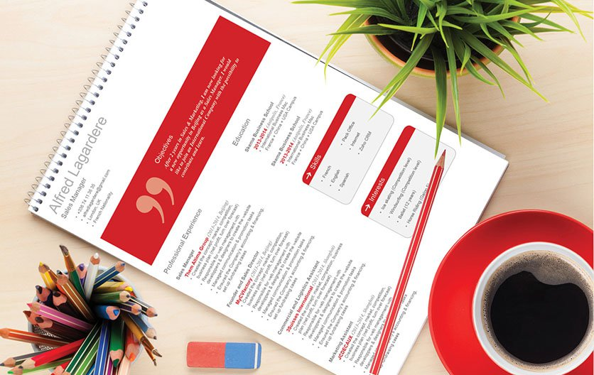 A well-structured professional resume template that is perfect for any career!