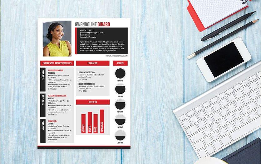 Un CV original, plaisant à lire, car hiérarchisant toutes les informations dans des encadrés, des colonnes et des barres pour mieux les retrouver.