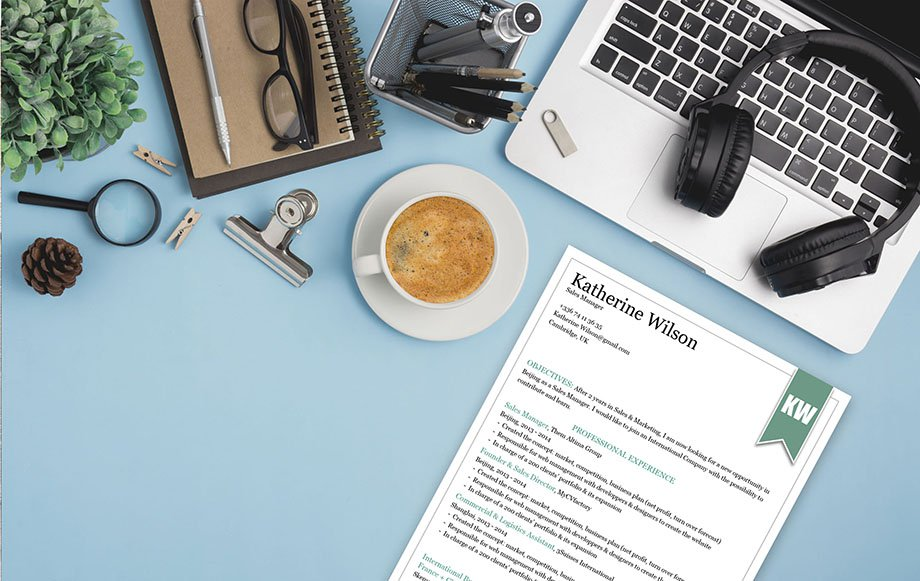 A clear and clean lay out and a functional design is present in this professional resume