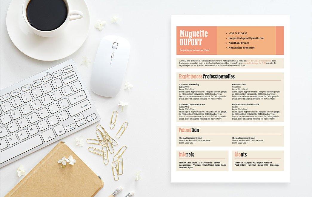 Exemple de CV se servant d'encadrés, de puces et d'intitulés colorés pour mettre en valeurs les renseignements et atouts professionnels du candidat.
