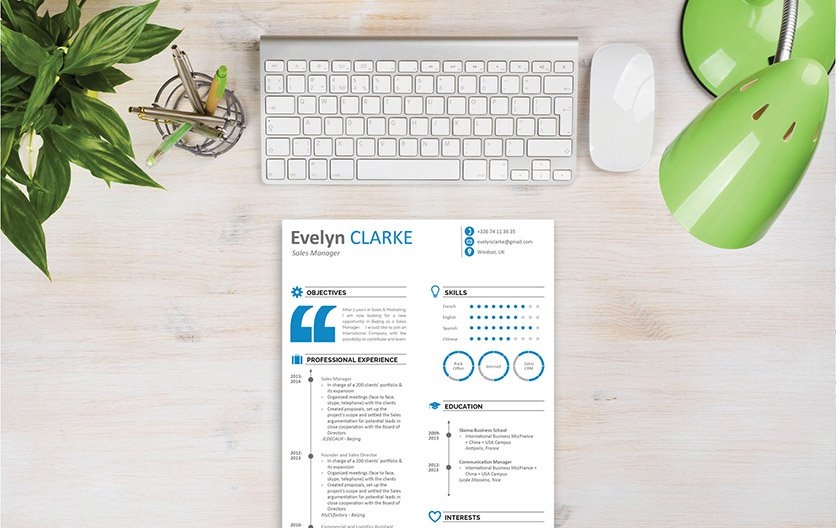 Clear and comprehensive are two words that best describe this business resume template
