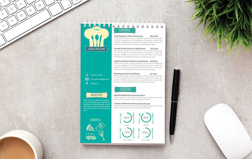 Great design and format, all relevant points are seen in this professional resume sample
