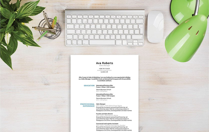 The professional resume template that is guaranteed to solidify your chances of landing that dream job