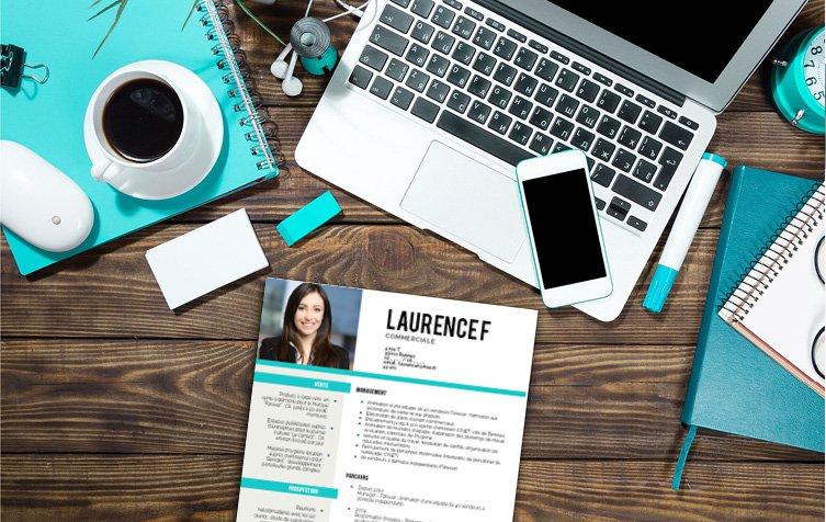 Un modèle de CV en toute simplicité, sans faute de goût et laissant transparaître un candidat bien organisé.
