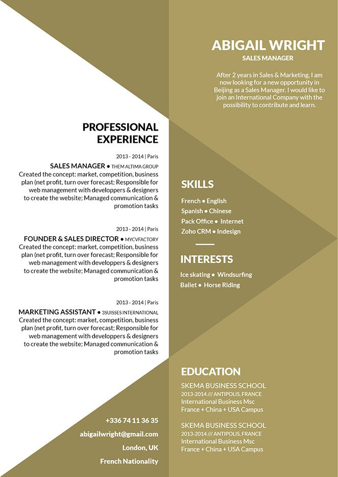 A resume layout made professional with great and clear design.